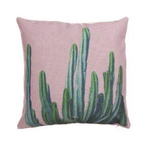 Cojín Cactus Stenocereus Aragonii