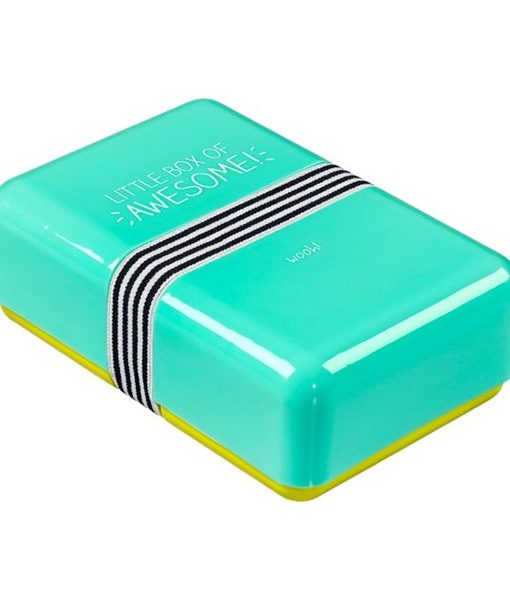 Lunch Box Mint Little Box