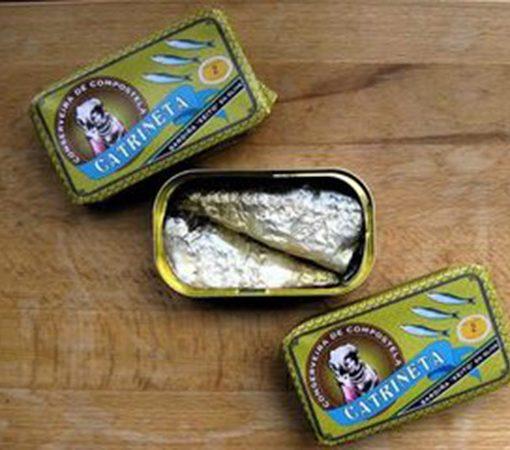 sardinas catrineta material revolution