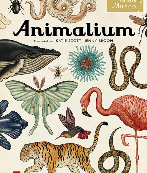 Libro Animalium en castellano de Katie Scott y Jenny Broom
