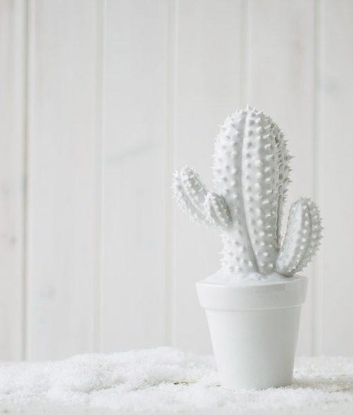 Hucha de cerámica cactus que pincha