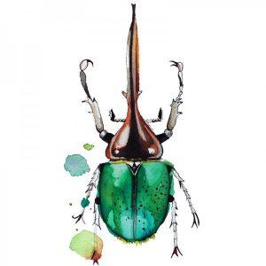 Ilustración Escarabajo Verde Acuarela