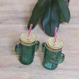 Taza Jarra Cactus Bote de Cristal con Tapa y Pajita