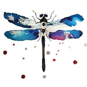 Dragonfly Libélula Acuarelas